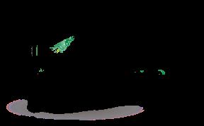 arbre oxygène - élagage, taille et soin des arbres en uzège